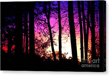 Begins The Night  Canvas Print