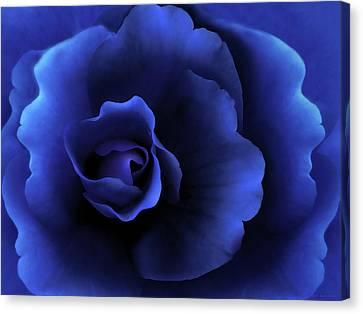 Begonia Floral Dark Secrets Canvas Print by Jennie Marie Schell