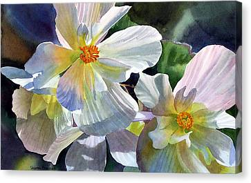 Begonia With Rainbow Shadows Canvas Print by Sharon Freeman