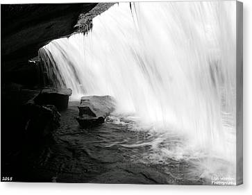 Behind The Falls Black And White Canvas Print by Lisa Wooten