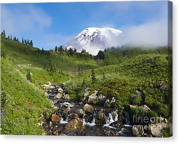 Behind The Fog Canvas Print by Mike Dawson