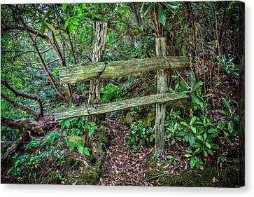 Behind The Green Fence Canvas Print by John Haldane