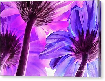 Digital Paint Flower Canvas Print - Behind The Scenes by Krissy Katsimbras