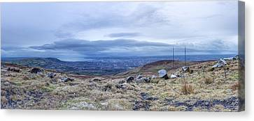 Belfast Lough From Divis Mountain Canvas Print