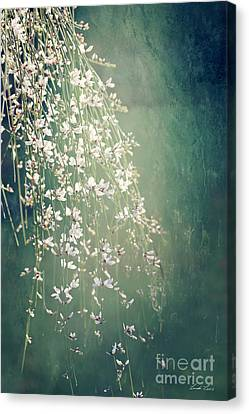 Canvas Print featuring the photograph Believe In Dreams by Linda Lees