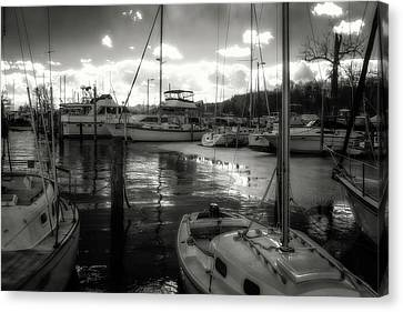 Bell Haven Docks Canvas Print