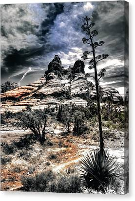 Canvas Print featuring the photograph Bell Rock by Jim Hill