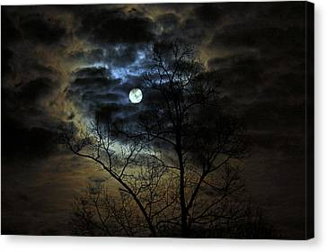 Bella Luna Canvas Print