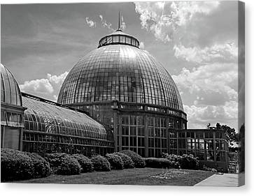 Belle Isle Conservatory 3 Bw Canvas Print by Mary Bedy