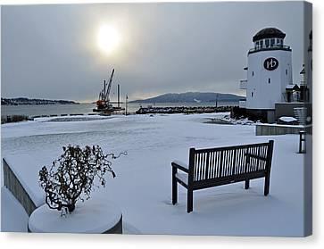 Bellwether In Winter Canvas Print by Matthew Adair