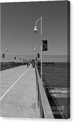 Belmont Veterans Memorial Pier 2 Canvas Print