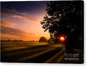 Beloved Land Canvas Print