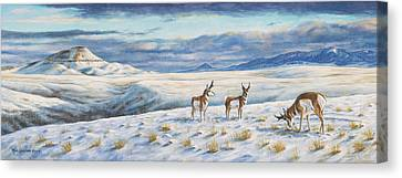 Canvas Print featuring the painting Belt Butte Winter by Kim Lockman