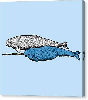 Beluge And Narwhal Whale - Color Canvas Print by Karl Addison
