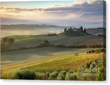 Canvas Print featuring the photograph Belvedere Morning by Brian Jannsen