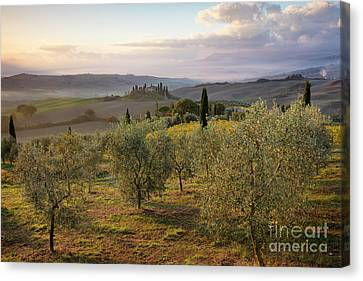 Canvas Print featuring the photograph Belvedere Morning II by Brian Jannsen