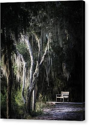 Chrystal Canvas Print - Bench At Sunset by Chrystal Mimbs