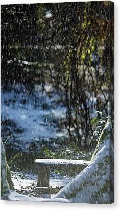 Canvas Print featuring the photograph Bench In Snow by Rebecca Cozart