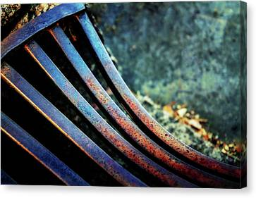 Bend In The Grate Canvas Print
