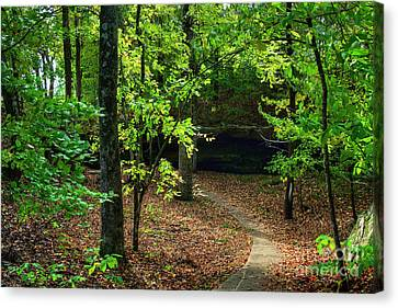 Bend In The Trail Canvas Print by Larry Braun