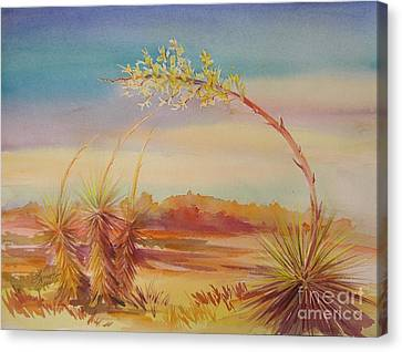 Bending Yucca Canvas Print by Summer Celeste