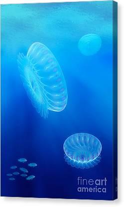 Beneath A Fractal Sea Canvas Print by John Edwards