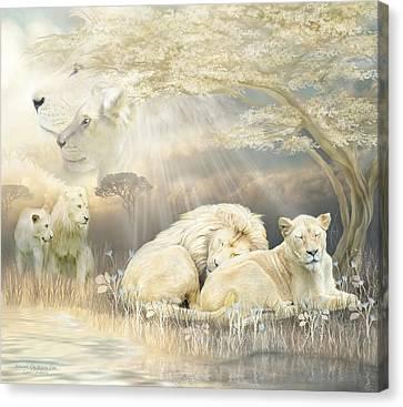 Beneath The Acacia Tree Canvas Print by Carol Cavalaris