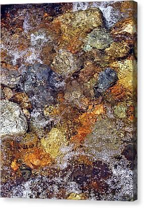 Eternal Flow Canvas Print - Beneath The Surface by Lynda Lehmann