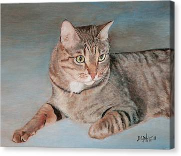 Bengal Cat Canvas Print by Joshua Martin