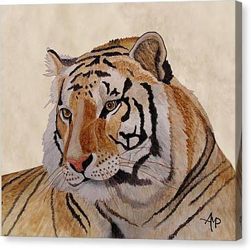 Bengal Tiger Canvas Print by Angeles M Pomata