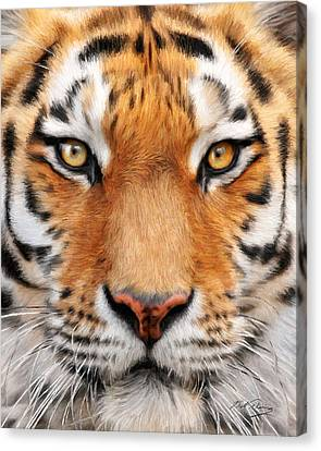 Bengal Tiger Canvas Print by Bill Fleming