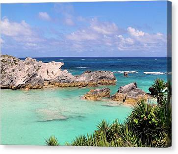 Bermuda Seascape Canvas Print by Janice Drew