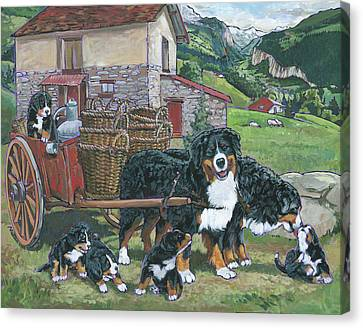 Bernese Mountain Dog Canvas Print by Nadi Spencer