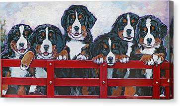 Bernese Mountain Dog Puppies Canvas Print by Nadi Spencer