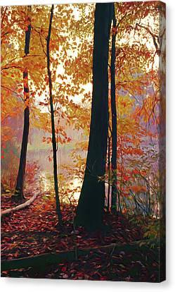 Bernharts Dam Fall 031 Canvas Print by Scott McAllister