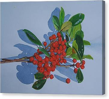 Canvas Print featuring the mixed media Berries by Constance Drescher