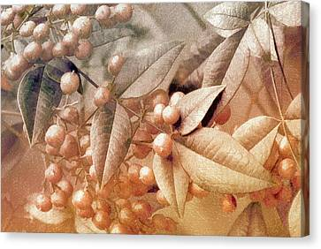 Berry And Leaf Brocade Canvas Print by Holly Kempe