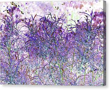 Canvas Print featuring the photograph Berry Bush by Ellen O'Reilly