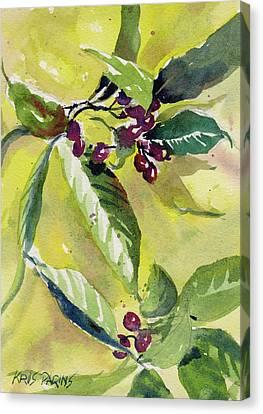 Berry Study Canvas Print by Kris Parins