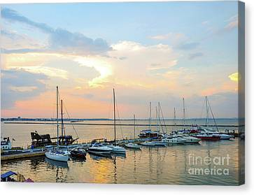 Berth For Yachts And Boats In The Seaport. Canvas Print