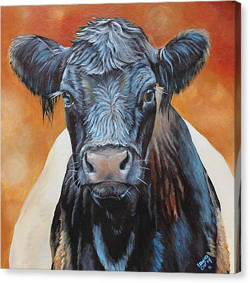 Bertha Beltie Canvas Print by Laura Carey