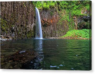 Beside Abiqua Falls In Summer Canvas Print by David Gn