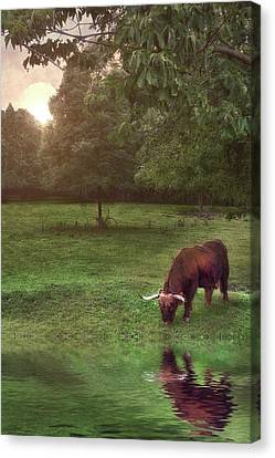 Canvas Print featuring the photograph Beside Still Waters by Mark Fuller