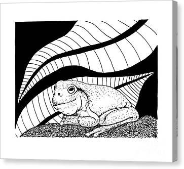 Betsy's Frog Canvas Print