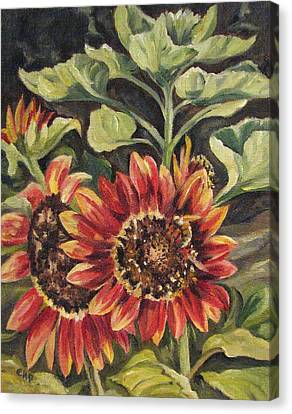 Betsy's Sunflowers Canvas Print by Cheryl Pass