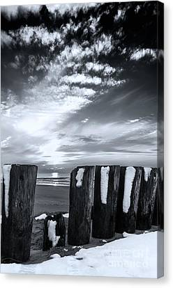 Between Light And Darkness Canvas Print by Digital Brush
