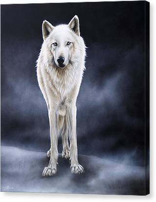 'between The White And The Black' Canvas Print by Sandi Baker