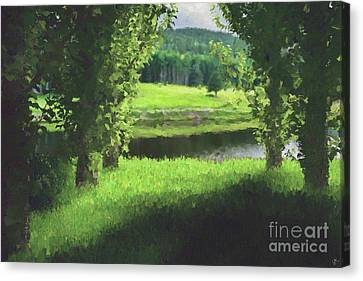 Between Trees Canvas Print by Galambosi Tamas