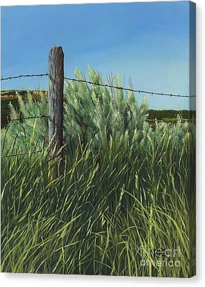 Between You, Me And The Fence Post Canvas Print