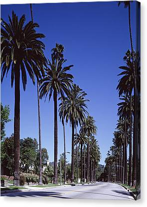 Beverly Hills And The Bel-air Section Canvas Print by Everett